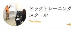 ドッグトレーニングスクール
